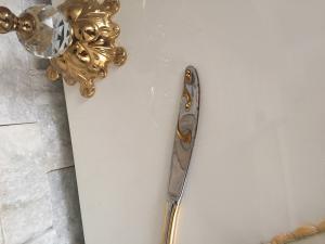 Vialend Deki Linens Mağazasından Aldığım Pierre Cardin Marka Gold Bıçak Seti Kullanmadan Paslandı