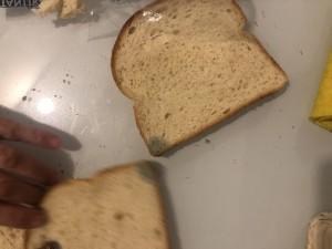 Getir Küflenmiş Ekmek